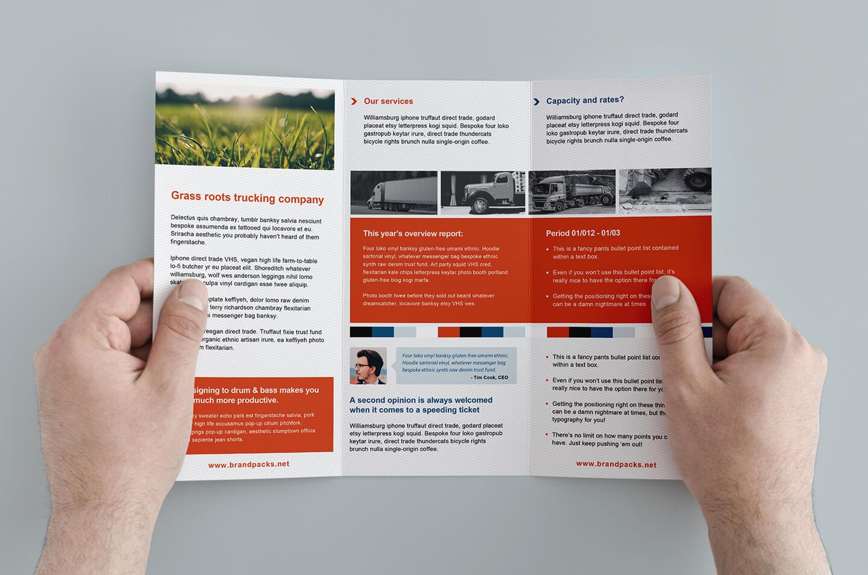 003 Template Ideas Free Corporate Trifold Brochure Tri Fold With Membership Brochure Template