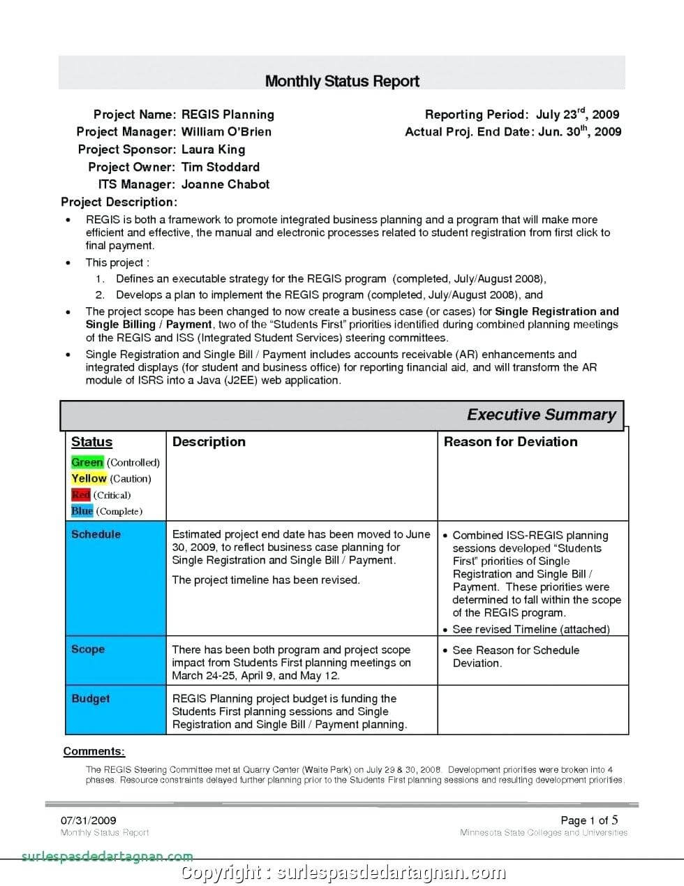 028 Monthly Sales Report Template Executive Manager Example Throughout Sales Manager Monthly Report Templates