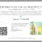 Everything You Need To Know About Coa + Certificate Of With Regard To Certificate Of Authenticity Template