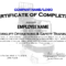 Forklift Certificate Templates – Zohre.horizonconsulting.co With Regard To Forklift Certification Card Template