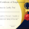 Free Sample Certificate Of Employment Template   Certificate Intended For Template Of Certificate Of Employment