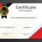 Free Sample Format Of Certificate Of Participation Template With Certificate Of Participation Template Pdf