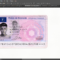 French Driver License (Permis De Conduire) Psd Template With Regard To French Id Card Template