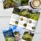 Google Slides Travel Brochure Template Free Regarding Google Docs Travel Brochure Template