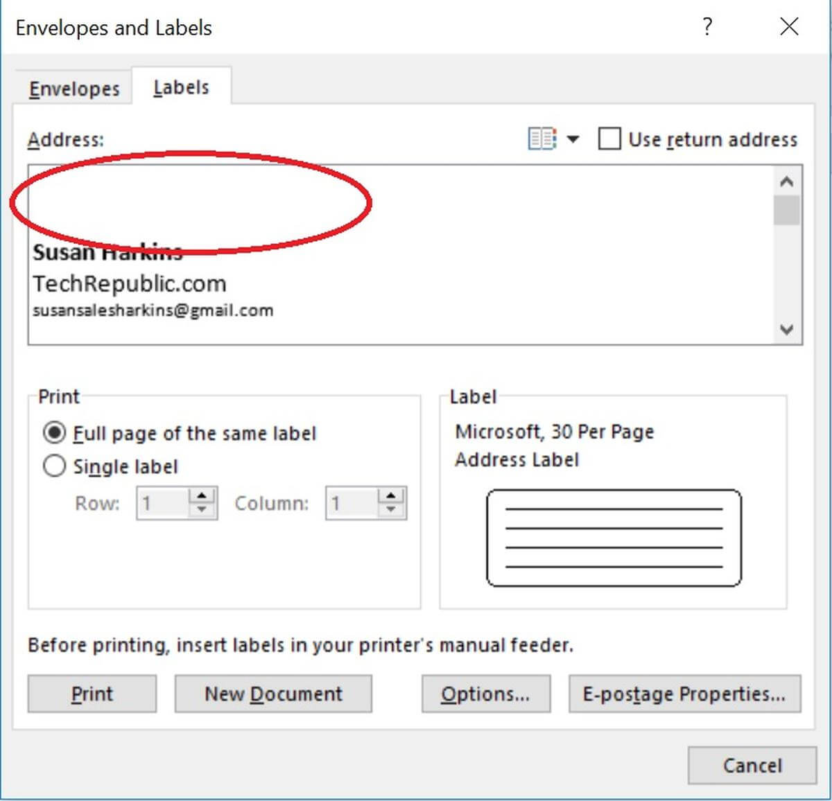 How To Insert Graphics Into Word Label Documents – Techrepublic Regarding Name Tag Template Word 2010