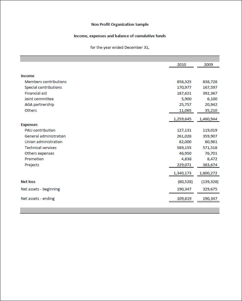 Sample Of Financial Report For Non Profit Organization With Regard To Non Profit Monthly Financial Report Template