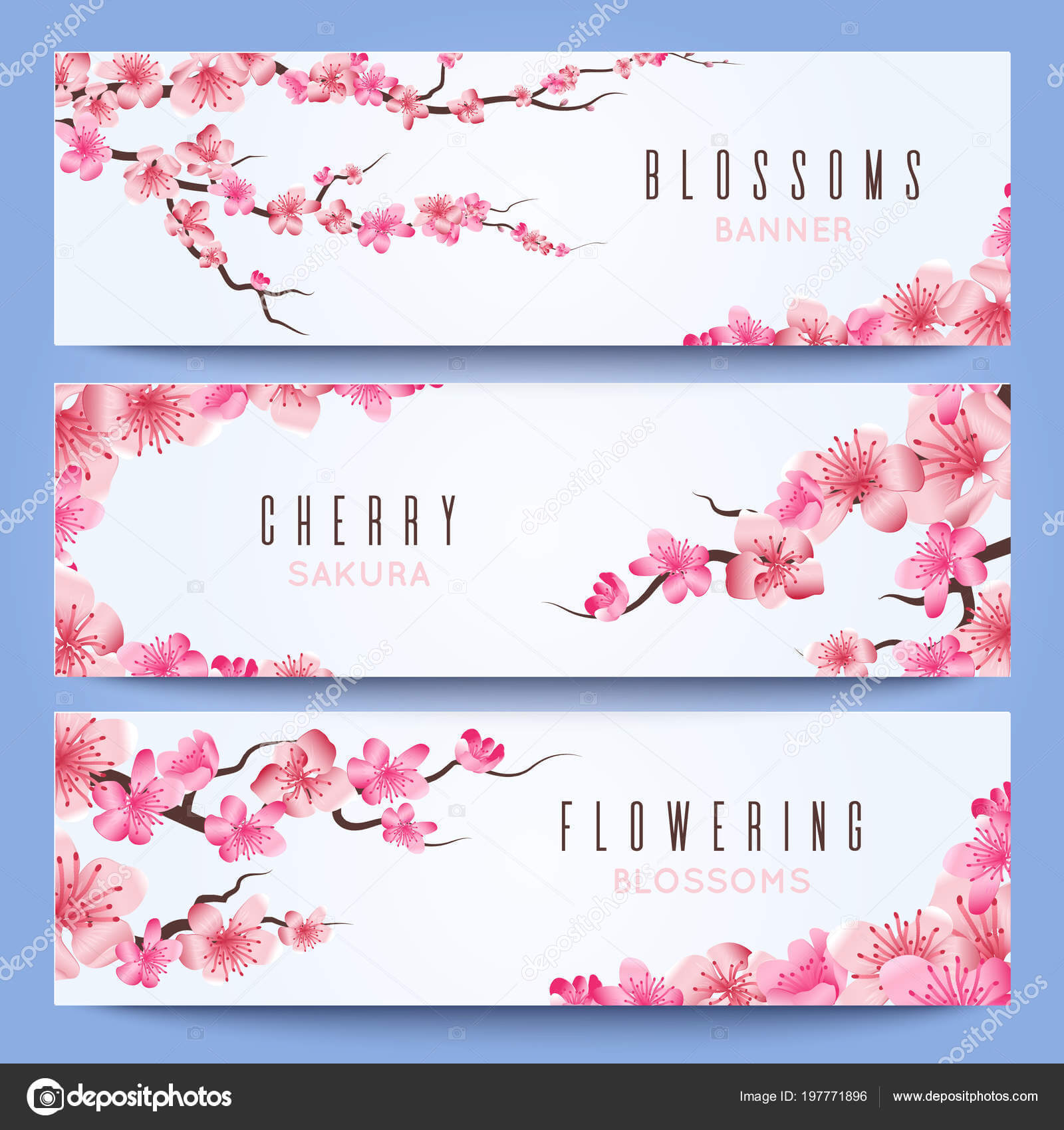 Wedding Banners Template With Spring Japan Sakura, Cherry Intended For Wedding Banner Design Templates