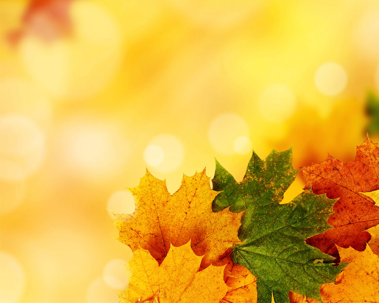 Yellow Autumn Backgrounds For Powerpoint - Nature Ppt Templates Throughout Free Fall Powerpoint Templates